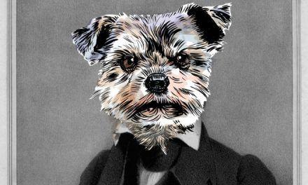 Sobre perros: Elton y Dana