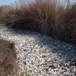 El Segura, convertido en un asqueroso río de plástico