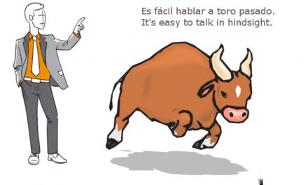 A TORO PASADO, TODOS SOMOS MANOLETE
