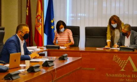 Ciudadanos acelera los trabajos de la Comisión de Reactivación Económica en la Asamblea Regional