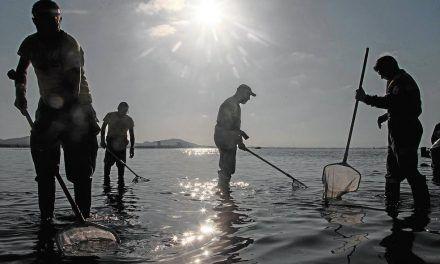 Ajedrez mortal en el Mar Menor